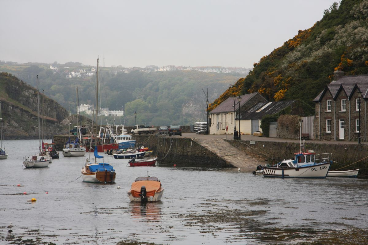 Lower Fishguard (Cwm)