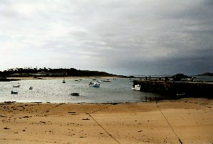New Grimsby